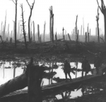 The Ypres Salient (World War 1)
