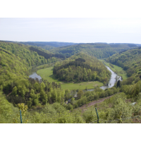 Driving into the heart of the Ardennes