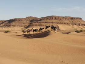 Trek in morocco : Palms and Dunes 3 days walking.